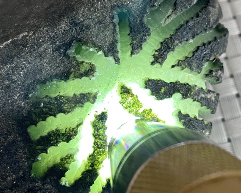 🤝#矿区新货来袭# 莫湾基开窗牌子料,打灯通透,有底色,种老水头十足,肉质细腻,有刚性和胶感,可以