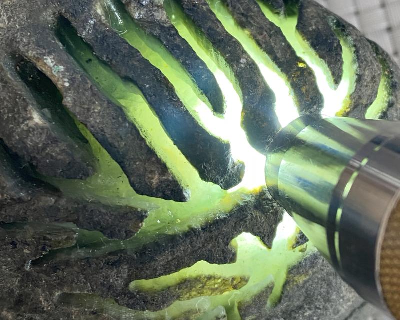 🤝#矿区新货来袭# 莫湾基开窗料,打灯部分有底色,种老水头十足,肉质极细腻,大面积开窗,出货漂亮,